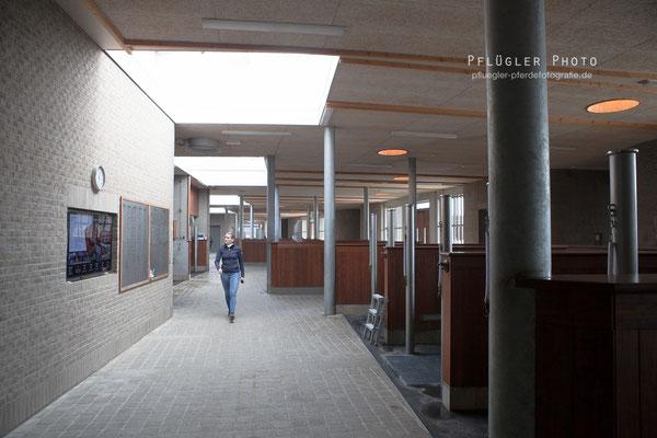 179. Putzplatz - Blue Hors - Sportstall