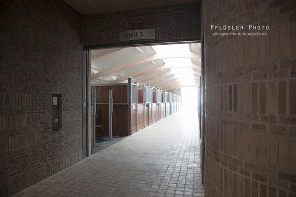 181. Boxengasse - Blue Hors - Sportstall