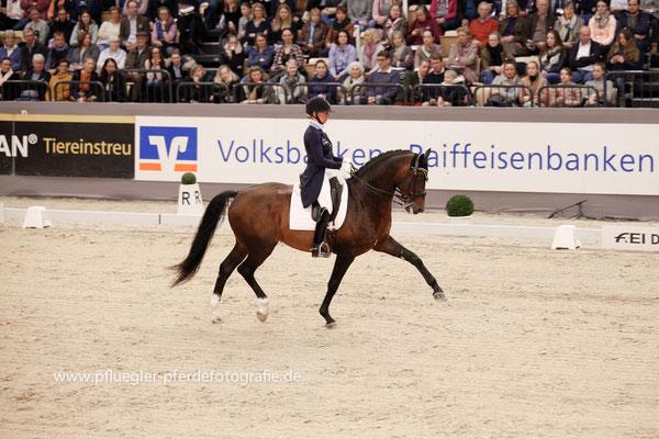 Rose Mathisen (Schweden) auf Zuidenwind 1187 (OO-Seven x Jazz)