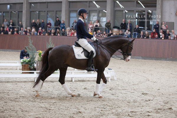 102. Blue Hors Don Olymbrio - Reiter Daniel Bachmann Andersen
