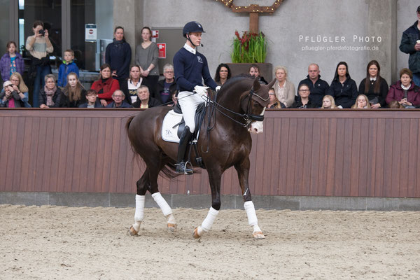 106. Blue Hors Don Olymbrio - Reiter Daniel Bachmann Andersen