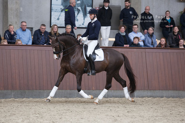 90. Blue Hors Don Olymbrio - Reiter Daniel Bachmann Andersen