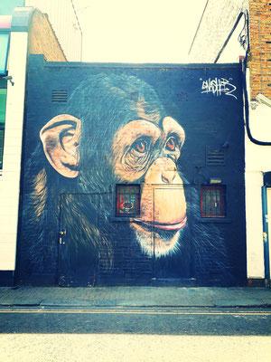 Street art de singe à Camden Londres vélo
