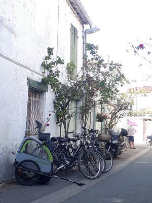 Loueur de vélo à Le Bois Plage en Ré