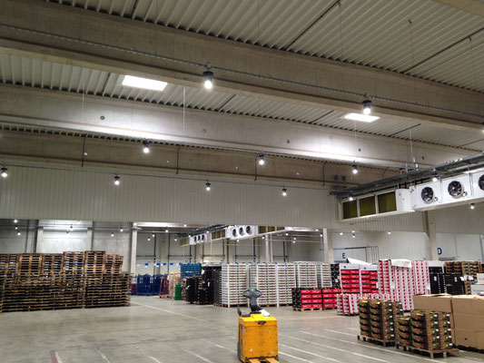 LED iBAY - Food Industry