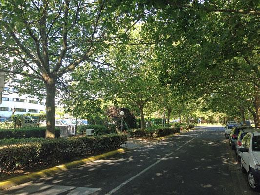 L'Avenue Plein-Soleil, où se trouve la résidence