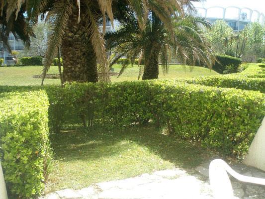 Le jardinet mesure 20 m². C'est un peu la 2ème pièce à vivre de l'appartement !
