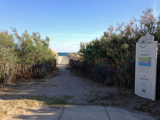 Un des nombreux accès à la plage depuis la Promenade des Dunes