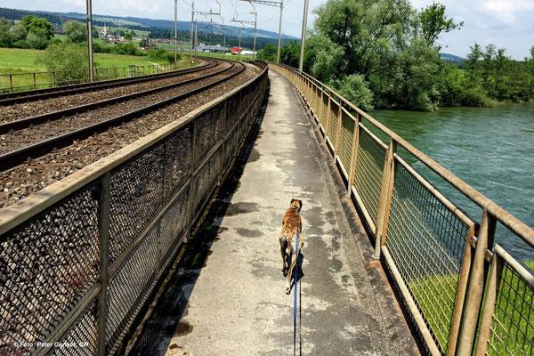 Eisenbahnbrücke bei Oberrüti