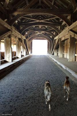 Die alte Holzbrücke bei Sins