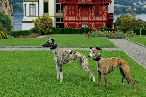 Vicky und Enya im Schlosspark