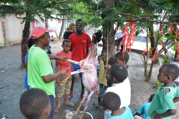 Geburtstagsvorbereitung: Uncle Ngala schlachtet das Schaf. Die Kinder freuen sich auf das Fleisch. Ich hab ein bisschen geweint.