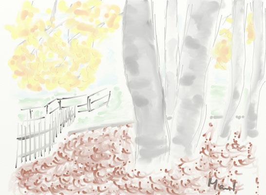 Birken am Zaun, gemalt mit ArtRage