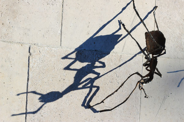 ant fourmi mier
