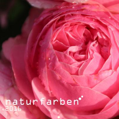 "calendar ""naturfarben"" 2016 title"
