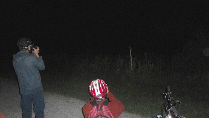 Ein Start nach Mass: Gleich drei Eulenarten konnten bereits in der Nacht notiert werden! Hier die Bebbi Babbler beim Beobachten einer Waldohreule.