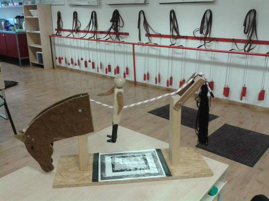 Modelo del ligamento supraspinale y el peso del jinete