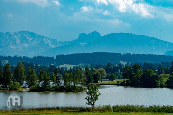 Pfrontener Bergkette mit Brentenjoch, Aggenstein und Breitenberg