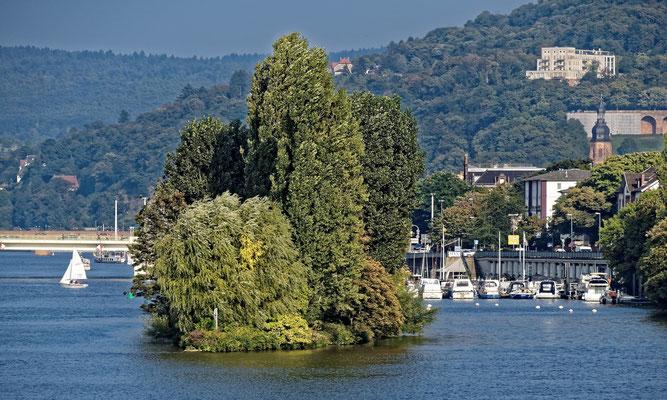 Neckarinsel.