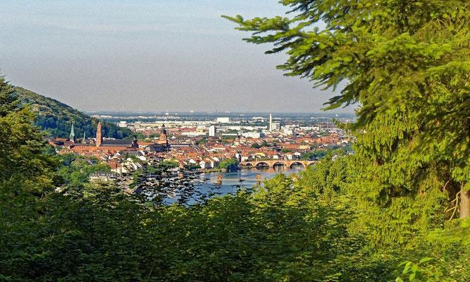 Blick vom Köpfel in Ziegelhausen.