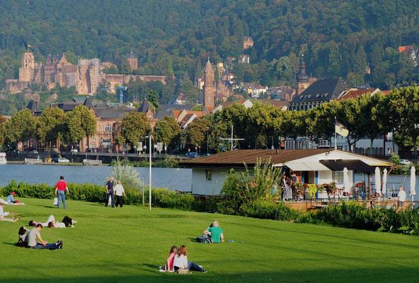 Schlossblick von der Neckarwiese.