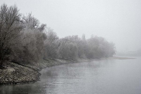 Mannheim - Winterstimmung am Rhein