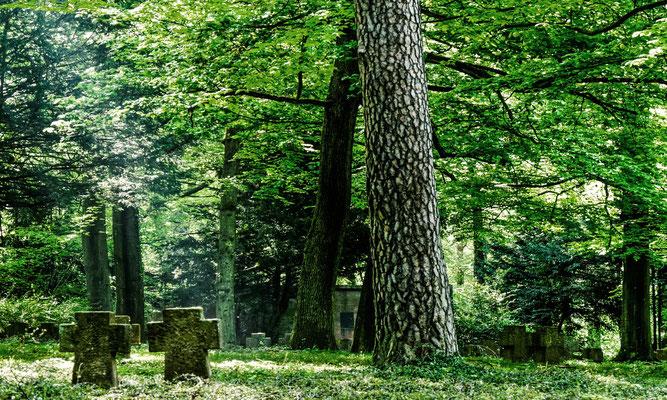 Ehrenfriedhof, Rohrbach.