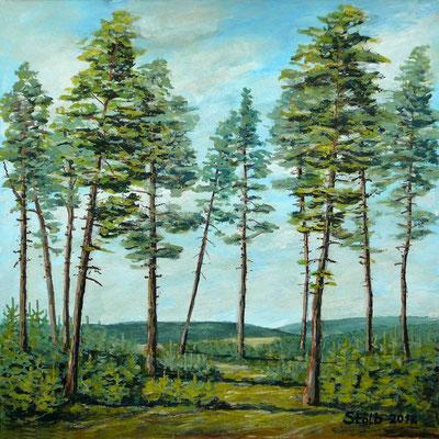 Kiefern im weiten Hügelland, 30 x 30 cm, 200 €