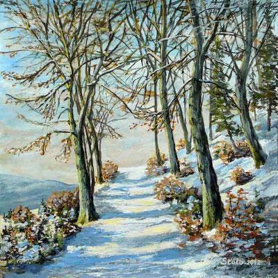 Verschneiter Ziehweg im Mittelgebirge, 30 x 30 cm, 250 €