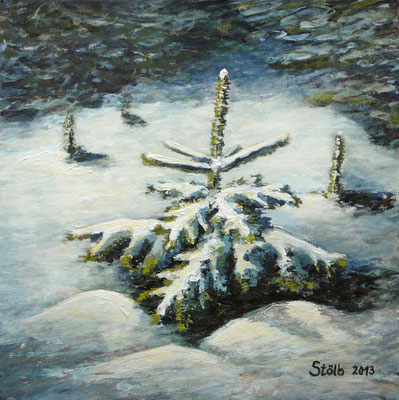 Jungtanne im Schnee, 30 x 30 cm, 200 €