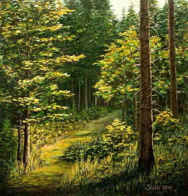 Bergahorn im Fichtenwald, 49 x 50 cm, 290 €
