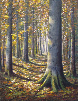 Herbstlicher Buchen-Lärchenwald, 51 c 66 cm, 420 €