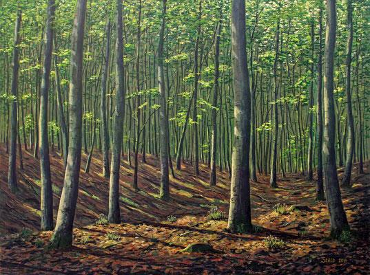 Morgen im Buchenwald, 90 x 120 cm, 1050 €