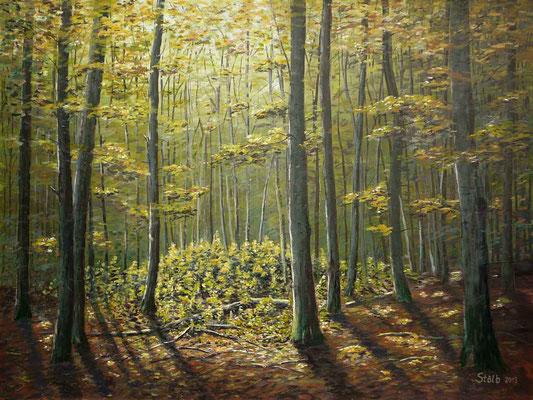 Lichtung im herbstlichen Buchenwald, 75 x 100 cm, 650 €