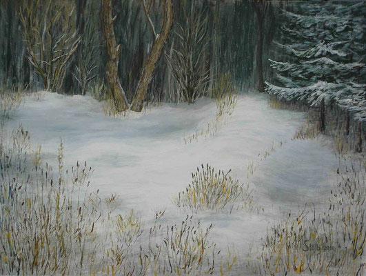 Sumpfige Waldlichtung im Winter, 60 x 80 cm, 450 €