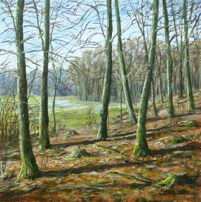 Vorfrühling am Waldrand, 30 x 30 cm, 250 €
