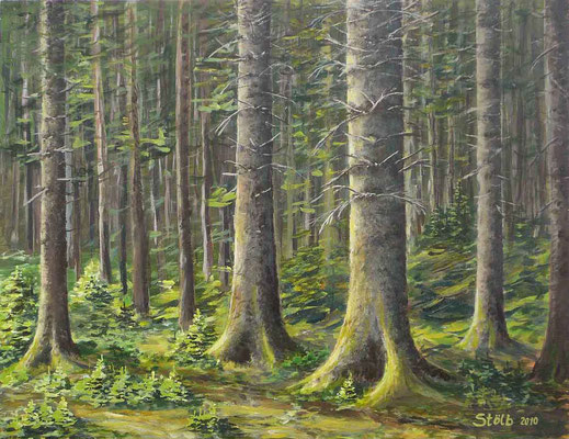 Fichtenaltholz mit Jungwuchs, 50 x 65 cm, 420 €