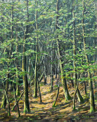 Buchenstangenholz, 40 x 50 cm, 280 €