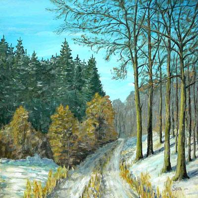 Weg in den Winterwald, 80 x 80 cm, 500 €