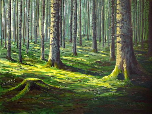 Morgensonne im Fichtenwald, 60 x 80 cm, 600 €