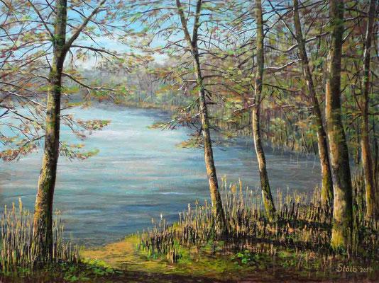 Frühling am Waldweiher, 60 x 80 cm, 450 €