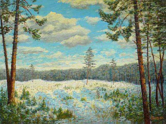 Winter in der Heide, 60 x 80 cm, 450 €