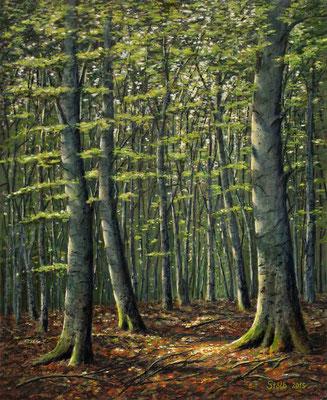 Sommerlicher Buchenwald, 60 x 74 cm, 500 €