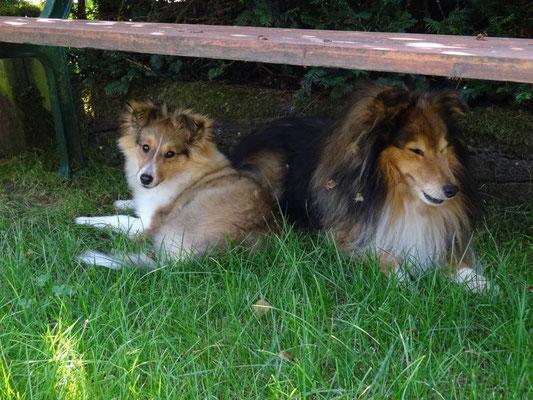 Nora und Zeus