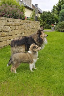 Nora mit grossem Bruder Zeus