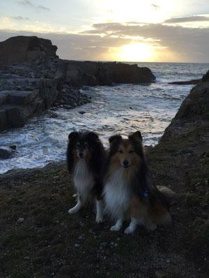 Jay und Sir in der Bretagne