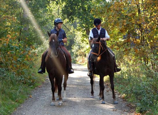 Ryanna ist unterwegs immer ein sehr verlässliches Pferd