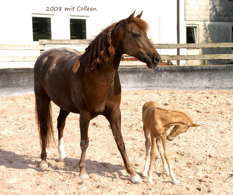 Velvet mit ihrem ersten Töchterchen Colleen