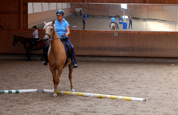 Erster Working Equitation Kurs Sept. 2019