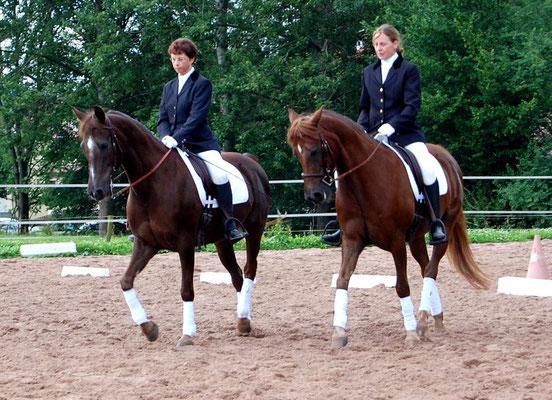 Ein Pas De Deux mit Velvet beim Morgan Horse Treffen in Thüringen